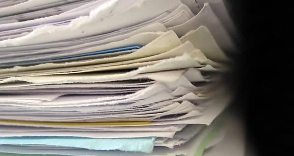 Het pulpmonster van de papierindustrie